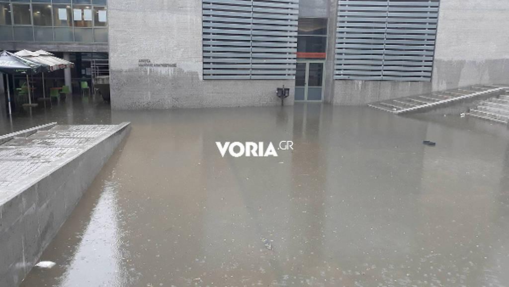 Η ισχυρή καταιγίδα ξέβρασε… ποντίκια στο δημαρχείο της Θεσσαλονίκης (photos)