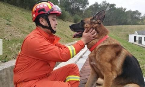 Ο σκύλος - ήρωας του σεισμού που έσωσε τη ζωή 13 ανθρώπων πριν από ακριβώς δέκα χρόνια (Pics+Vid)