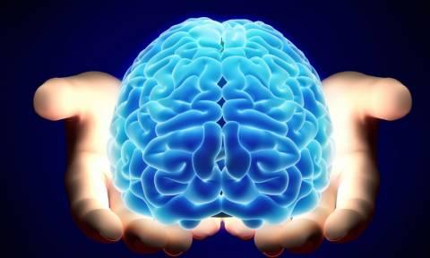 Ετοιμάζουν πειράματα με μίνι… εγκεφάλους! Δείτε τι θα περιέχουν