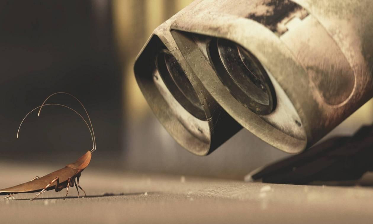 Για αυτό το λόγο μας ανατριχιάζουν τόσο πολύ οι κατσαρίδες!