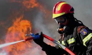 Προσλήψεις: Ξεκίνησε η υποβολή αιτήσεων για τους δασοπυροσβέστες