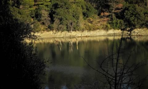 Αυτή είναι η εντυπωσιακή λίμνη που βρίσκεται μόλις μισή ώρα από την Αθήνα (photos)