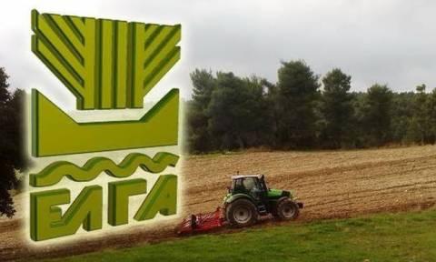 ΕΛΓΑ: Σήμερα (24/5) οι αποζημιώσεις ύψους 5,5 εκατ. ευρώ σε 6.645 αγρότες και κτηνοτρόφους