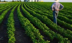 Αγροτικά δάνεια: Ανοίγει αύριο (25/05) η πλατφόρμα - Όσα πρέπει να γνωρίζετε