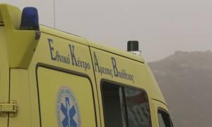 Ασύλληπτη τραγωδία στα Τρίκαλα: Νεκρός 32χρονος από τσίμπημα μέλισσας