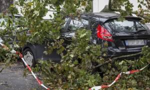 Σκοτώθηκαν από πτώση δέντρου ενώ έκαναν ρεπορτάζ στη Βόρεια Καρολίνα