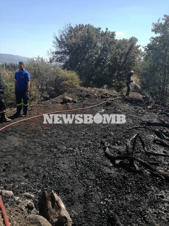 Φωτιά ΤΩΡΑ: Μεγάλη πυρκαγιά στο Μαρούσι κοντά στο κτήμα «Ανδρέας Συγγρός»