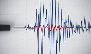 Survivor 2: Σεισμός ταρακούνησε τον Άγιο Δομίνικο (pics)