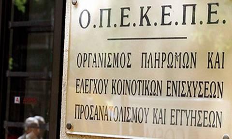 Πληρωμές 3,8 εκατ. ευρώ από τον ΟΠΕΚΕΠΕ
