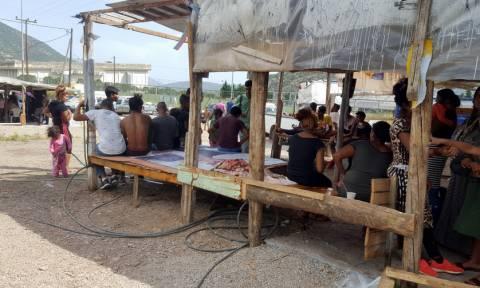 Οργή στην Άμφισσα: Ρομά απειλούν να πάρουν το νόμο στα χέρια τους