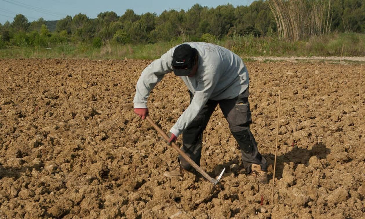 Φρίκη: Φύτευε πατάτες στον κήπο του και ανακάλυψε ότι η γυναίκα του είναι δολοφόνος