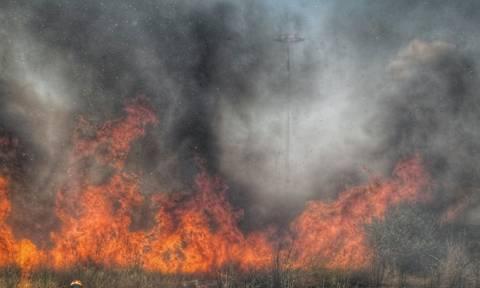 Φωτιά τώρα: Συναγερμός για πυρκαγιά στο Άγιο Όρος