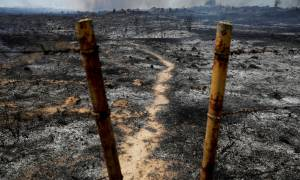 Χωρίς τέλος η αιματοχυσία στη Γάζα: Ένας ακόμη Παλαιστίνιος νεκρός από ισραηλινά πυρά