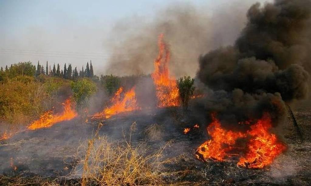 Φωτιά τώρα: Πυρκαγιά στην Αλεξανδρούπολη