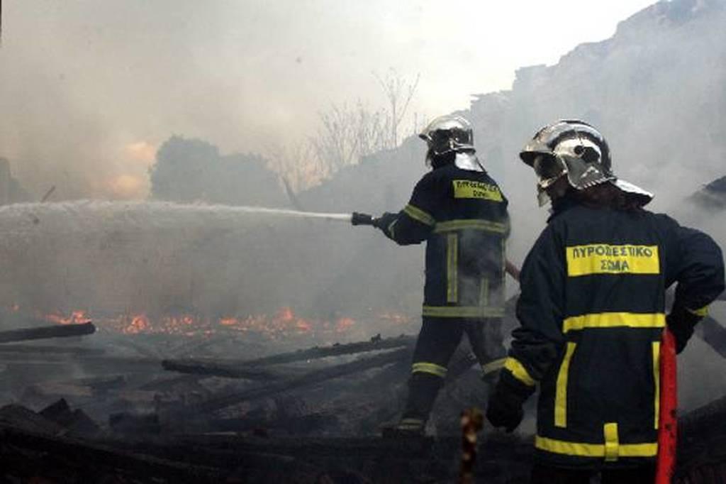 ΟΑΕΔ: Που θα απασχοληθούν οι εργαζόμενοι για την πυροπροστασία