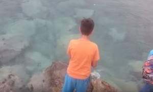 Κρήτη: Παιδί πέταξε το αγκίστρι του και έβγαλε αυτό το… ΤΕΡΑΣ! (video+pic)