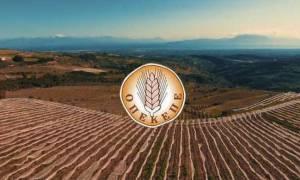ΟΠΕΚΕΠΕ: Προθεσμία μέχρι 15 Ιουνίου για τις αιτήσεις ενίσχυσης αγροτών για το 2018