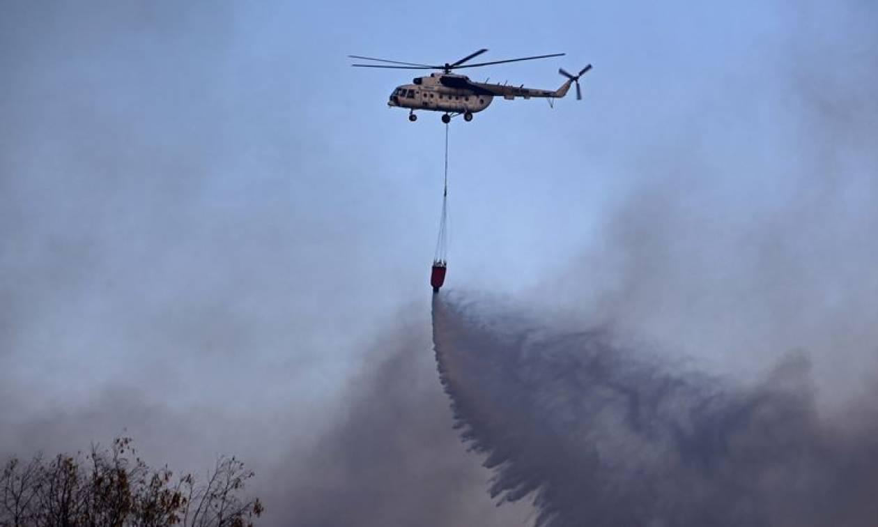 Φωτιά τώρα – Συναγερμός για μεγάλη πυρκαγιά στη Βοιωτία