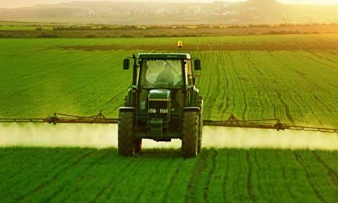 Έως και 30% μπορεί να μειωθεί μελλοντικά η παραγωγή λαχανικών στην Ελλάδα