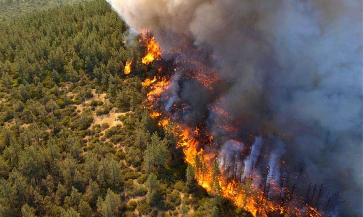 Αλόννησος: Ακόμα καίνε εστίες σε δύσβατο ανάγλυφο - Εκκενώθηκε ξενοδοχείο