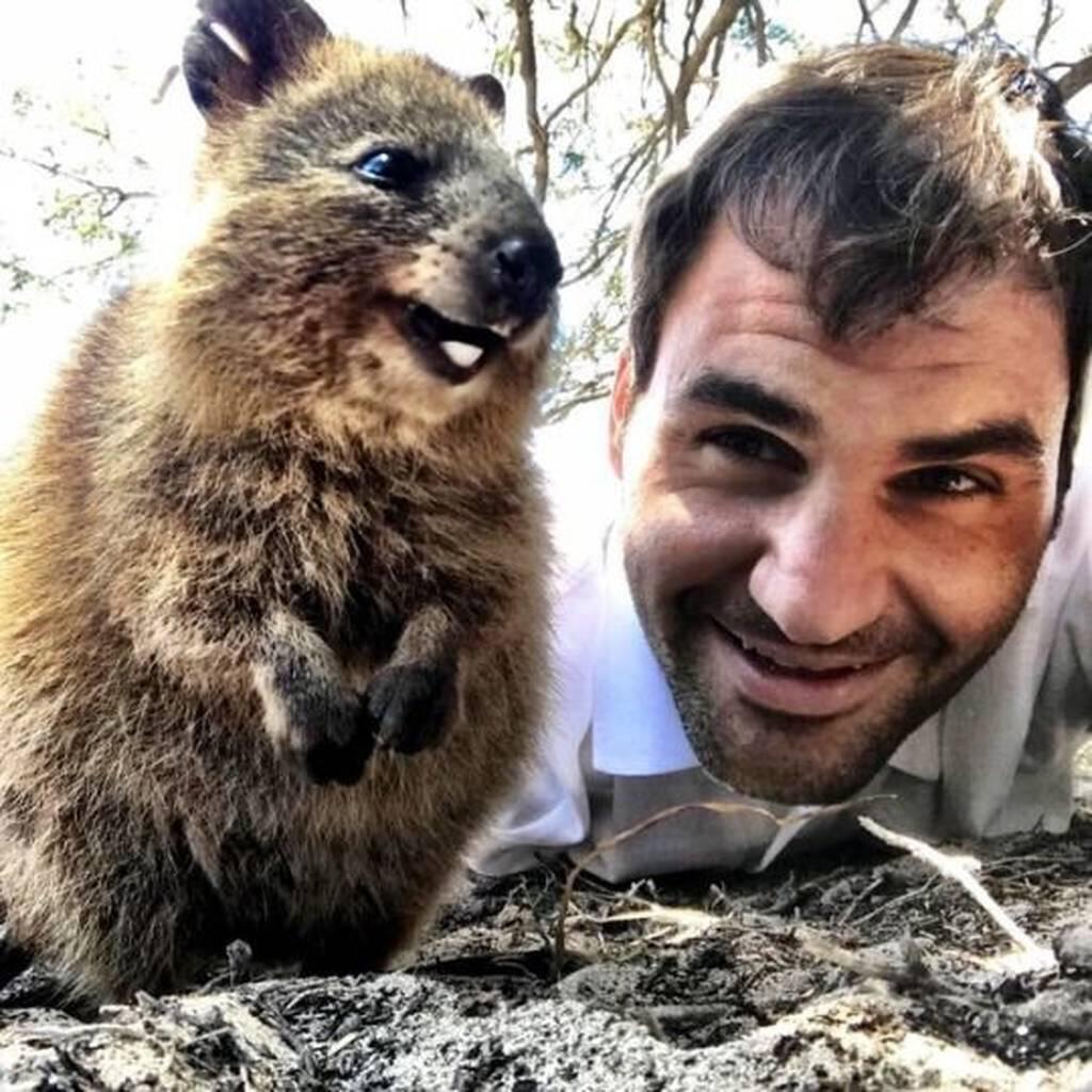 Χαρμόσυνα νέα: Αυξάνεται ο πληθυσμός του πιο χαρούμενου ζώου στον κόσμο! (pics)