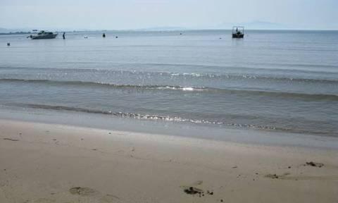 Συναγερμός σε παραλία του Πύργου: Έπαθαν σοκ οι λουόμενοι