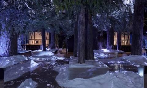 «Restaurant 1683»: Ένα... διαφορετικό εστιατόριο σε σκηνικό δάσους!