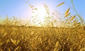 Όλα όσα θα πρέπει να γνωρίζεις για το Θερινό Ηλιοστάσιο