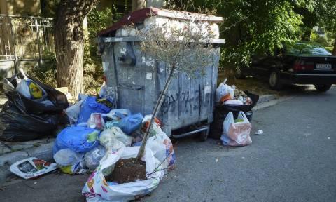 Κανονικά λειτουργεί ο ΧΥΤΑ Φυλής - Μαζεύουν τα σκουπίδια από τους δρόμους της Αθήνας