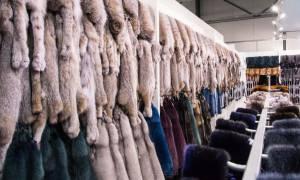 Καστοριά: Έκλεψαν γούνες αξίας 1.870.000 ευρώ - Συνελήφθη ένας 56χρονος