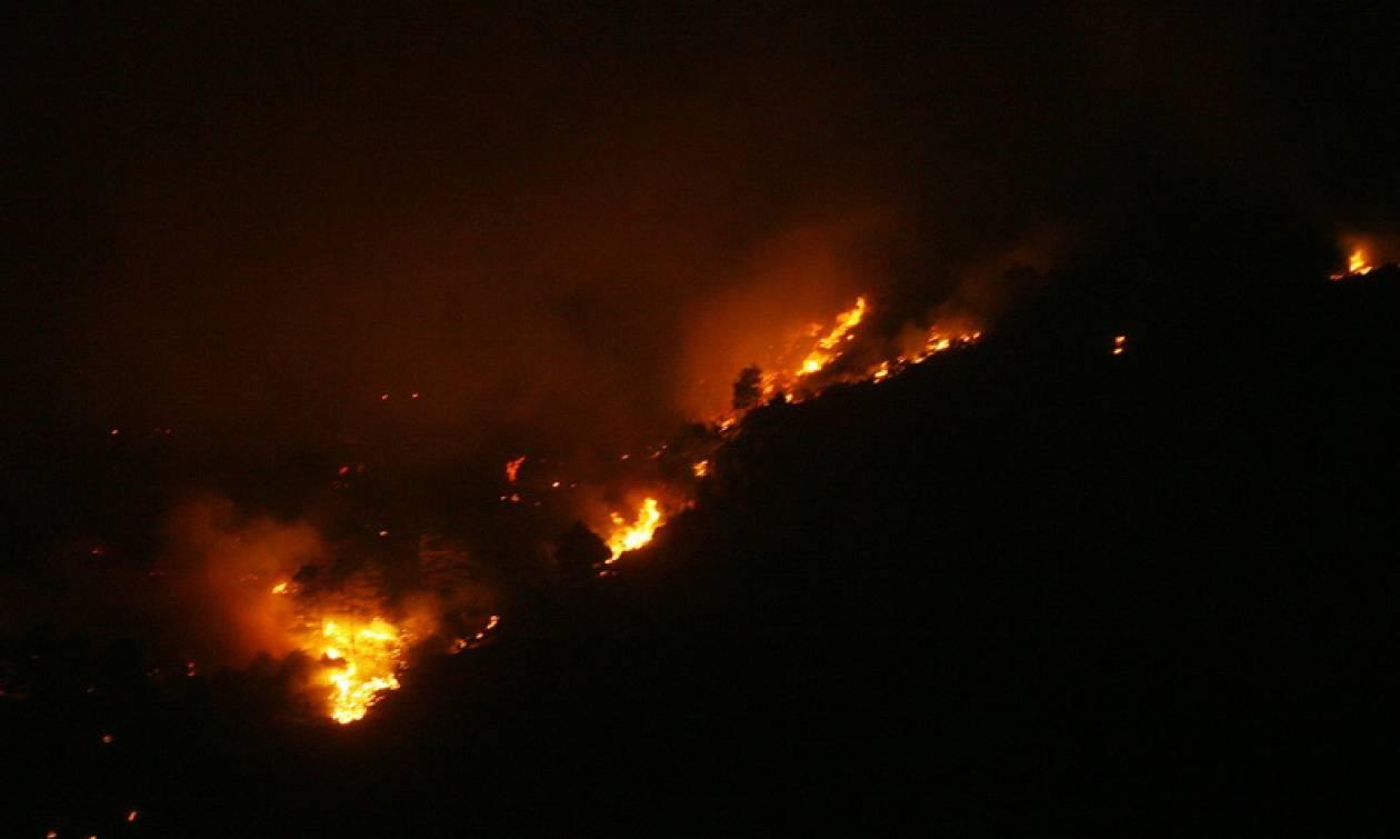 Ανεξέλεγκτη η πυρκαγιά στον Πύργο Τυλληρίας - Τη βοήθεια του Ισραήλ ζήτησε η Κύπρος (map)