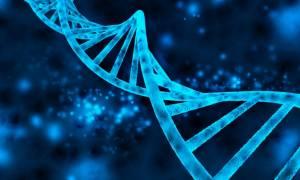 Πόσα γονίδια έχει ο άνθρωπος; Σύμφωνα με την τελευταία «απογραφή» είναι… 21.306