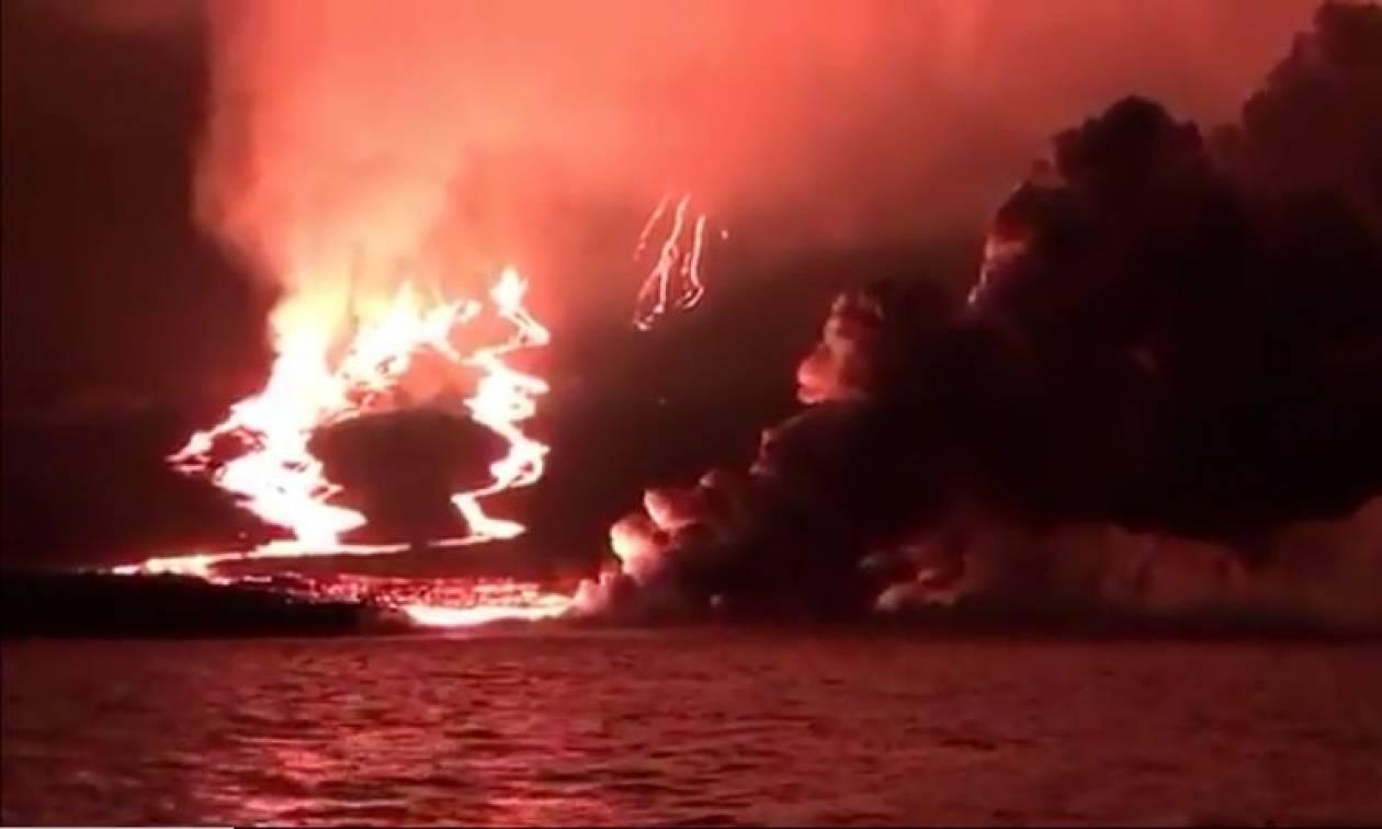 Απίστευτο βίντεο: «Κόλαση» φωτιάς στα νησιά Γκαλαπάγκος (vid)