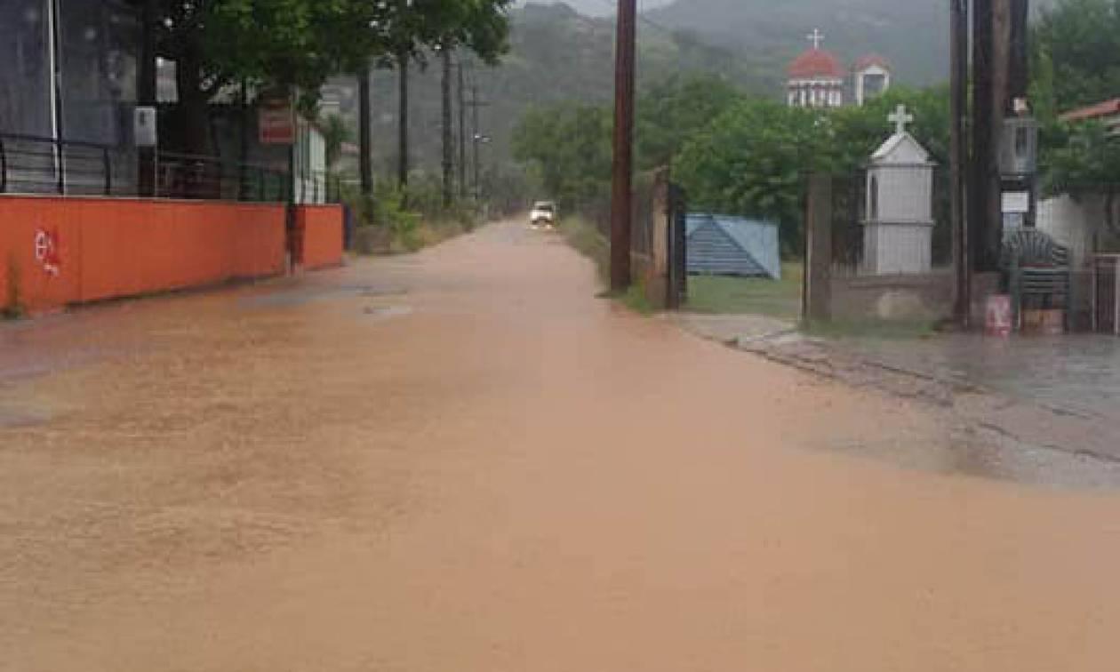 Κακοκαιρία - Λάρισα: Πλημμύρες στην Αγιά από τη «Νεφέλη» (pics)