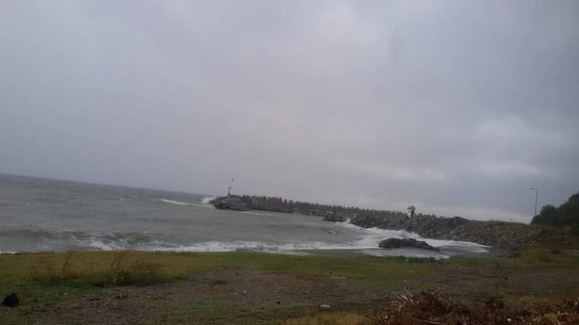Κακοκαιρία - Λάρισα: Πλημμύρες και καταστροφές στην Αγιά (pics)
