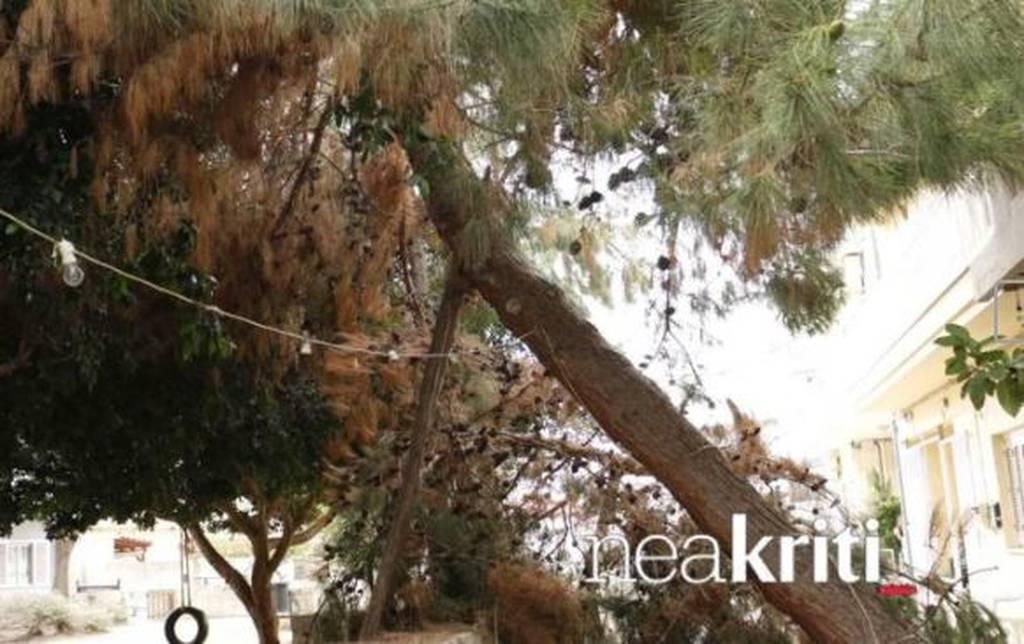 Κρήτη: Παραλίγο τραγωδία με παιδιά που έπαιζαν σε πάρκο