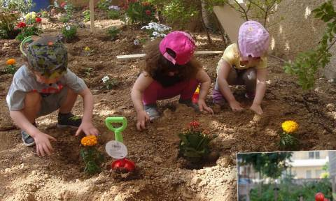 Δασκάλα έφτιαξε... λαχανόκηπο σε παιδικό σταθμό
