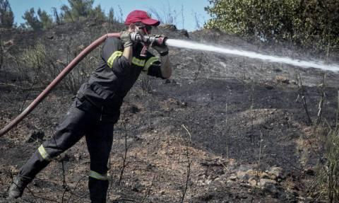 Μεσολόγγι: Υπό μερικό έλεγχο η φωτιά στην Κατοχή Μεσολογγίου