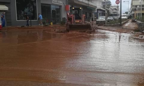 Σε απόγνωση οι κάτοικοι στη Μάνδρα: «Τι θα γίνει το χειμώνα;» - Ζητούν ονόματα υπευθύνων