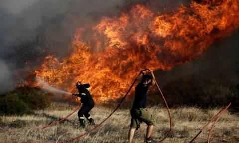Μεγάλη φωτιά ΤΩΡΑ στα Χανιά - Εκκενώθηκε οικισμός