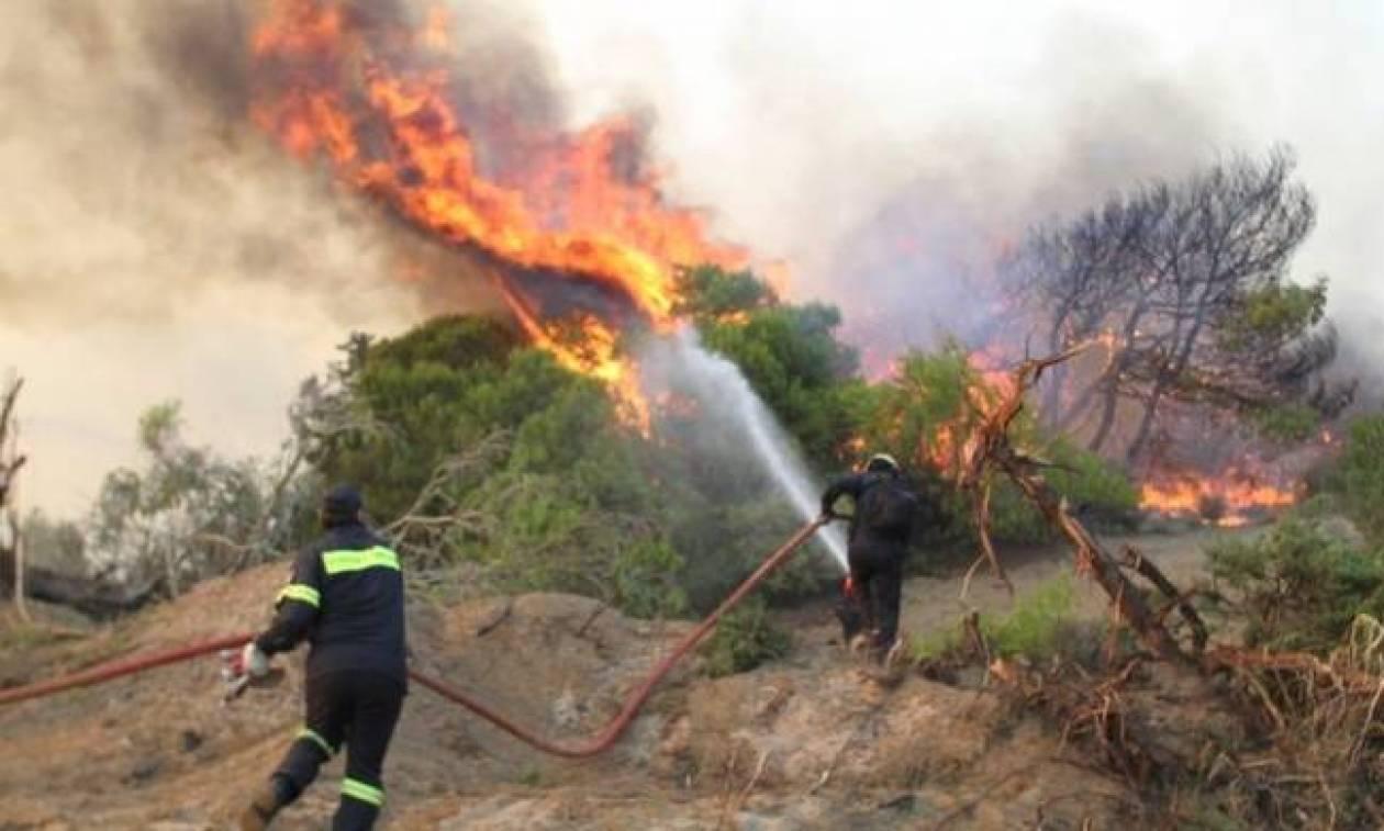 Φωτιά ΤΩΡΑ: Μεγάλες πυρκαγιές σε Χανιά και Κάρυστο