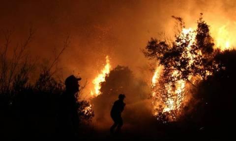 Φωτιά ΤΩΡΑ - Λακωνία: Υπό μερικό έλεγχο η πυρκαγιά στη Μονεμβασιά (χάρτες)