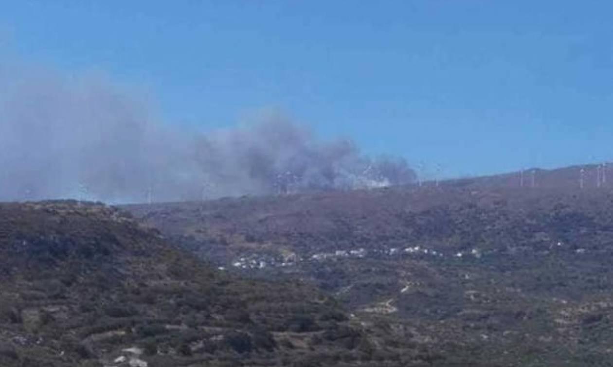 На Крите пожарные продолжают борьбу с огнем в населенном пункте Сетиа