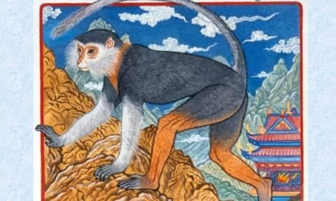 Ζώδια Κινέζικης Αστρολογίας: Μήπως είσαι εύστροφος και σου αρέσουν τα... δύσκολα;