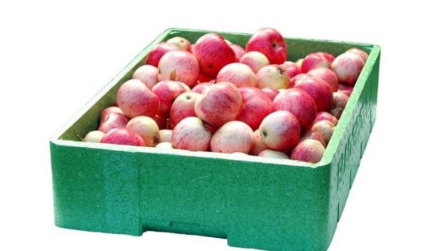 Δέσμευση φρούτων σε επιχείρηση του Πειραιά