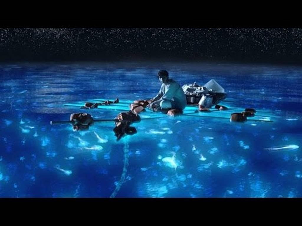 Παραλία στις Μαλδίβες… φωσφορίζει τη νύχτα (vid)