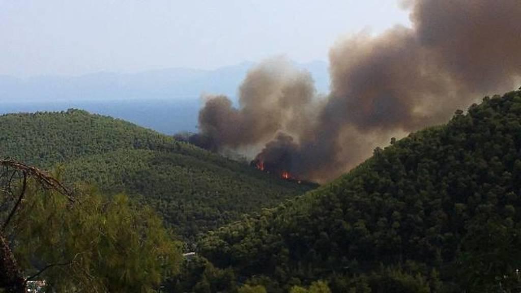 Φωτιά ΤΩΡΑ: Μεγάλη πυρκαγιά στη Σκόπελο – Συγκλονιστικές εικόνες από τον πύρινο εφιάλτη