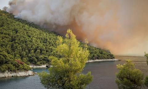 Φωτιά ΤΩΡΑ: Πύρινη κόλαση στη Σκόπελο – Στάχτη χιλιάδες στρέμματα πευκοδάσους (vid)