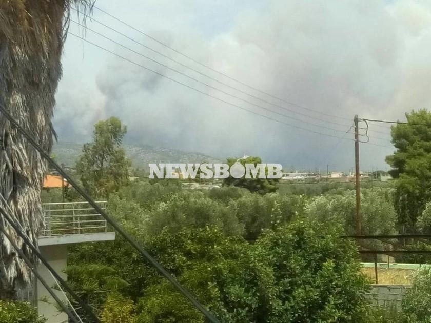 ΕΚΤΑΚΤΟ: Μεγάλη φωτιά στη Δυτική Αττική - Στις φλόγες τα Γεράνια Όρη (pics)