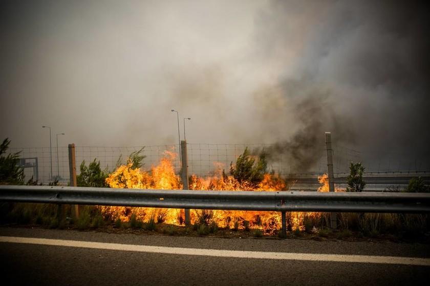 Φωτιά Κινέτα Live: Διεκόπη η κυκλοφορία του Προαστιακού - Συγκλονιστικές εικόνες από την Εθνική Οδό